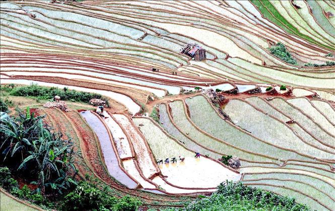 Ruộng bậc thang - bức tranh nghệ thuật nơi vùng núi Sơn La - Ảnh 7.