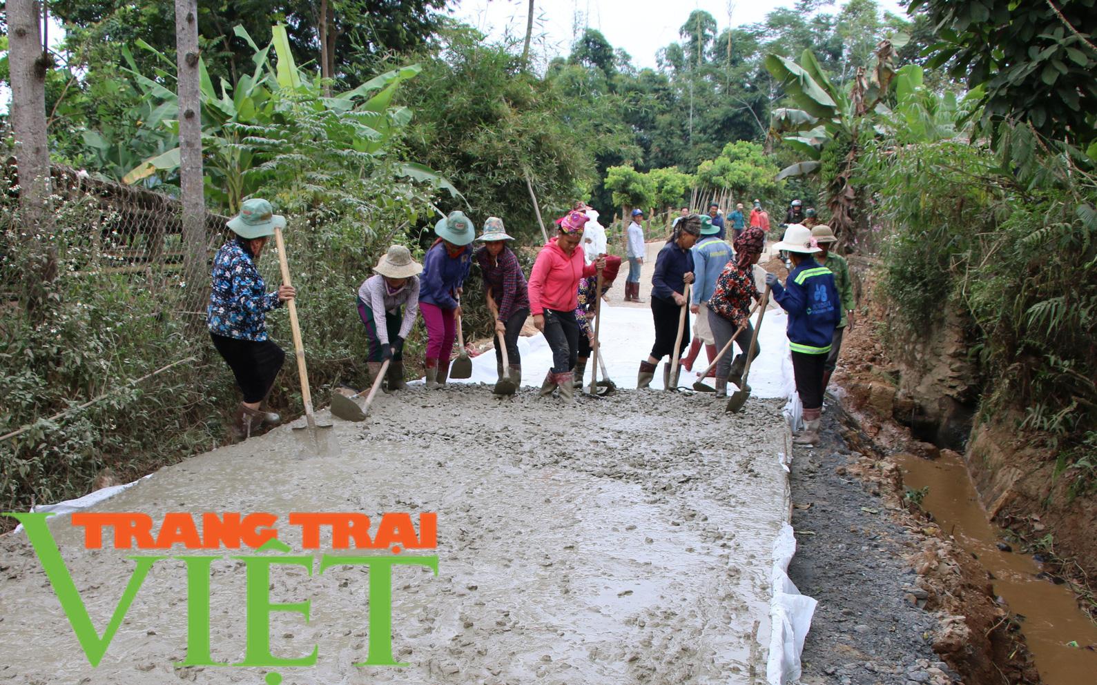 Hội Nông dân Sơn La hiến đất, góp sức xây dựng nông thôn mới - Ảnh 6.