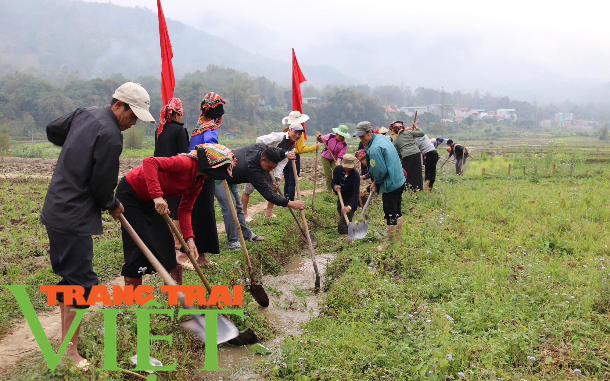 Hội Nông dân Sơn La hiến đất, góp sức xây dựng nông thôn mới - Ảnh 2.