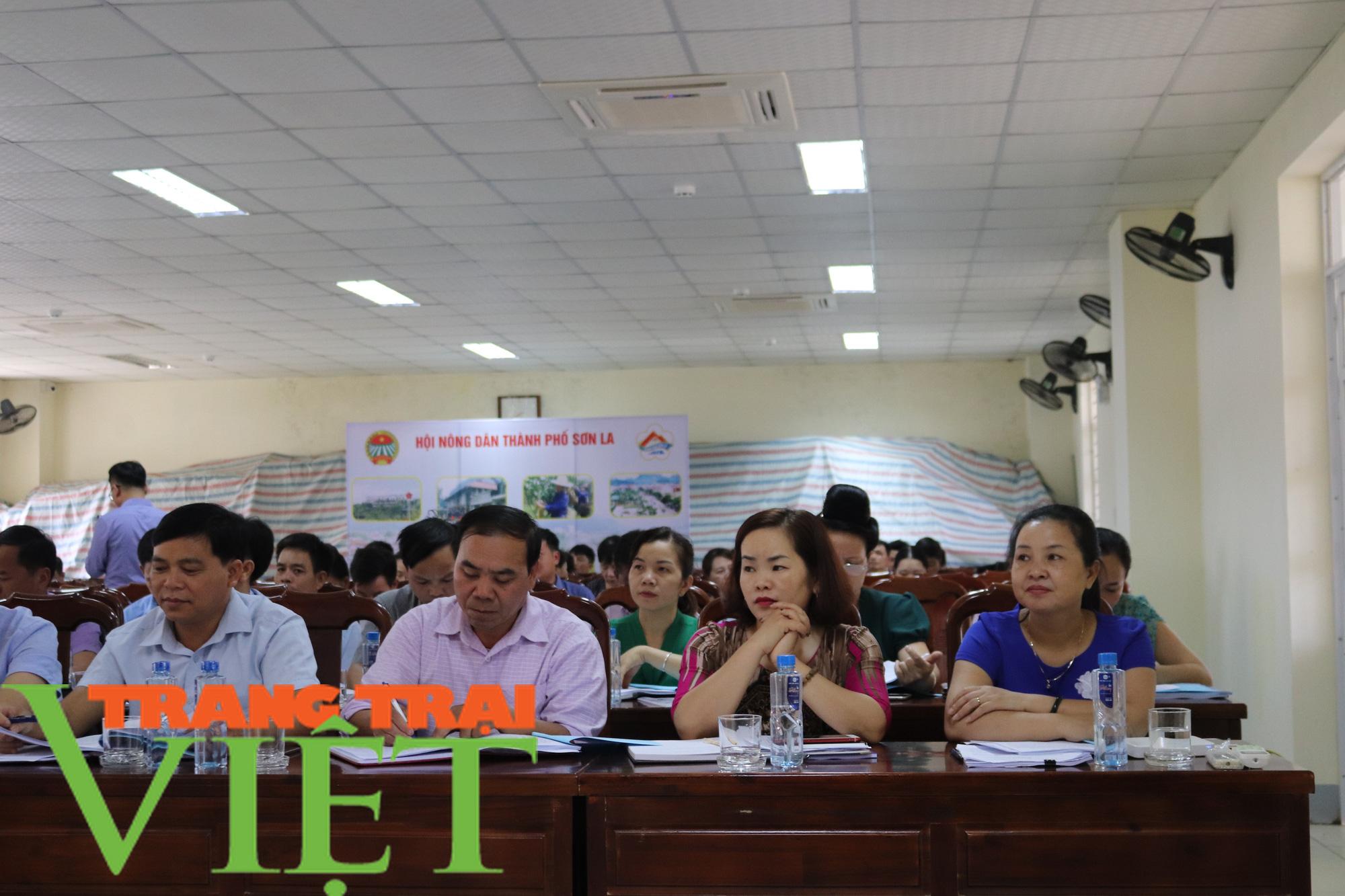 Hội Nông dân Sơn La hiến đất, góp sức xây dựng nông thôn mới - Ảnh 4.