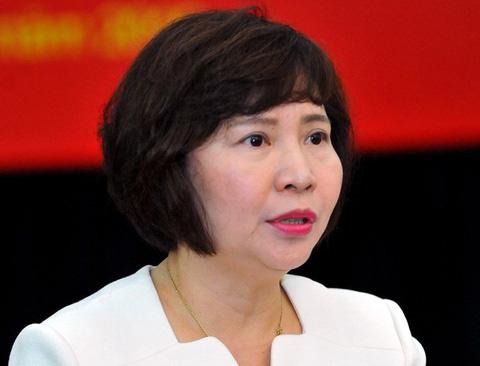 Trước khi bị truy nã, cựu Thứ trưởng Bộ Công Thương Hồ Thị Kim Thoa giàu cỡ nào? - Ảnh 1.