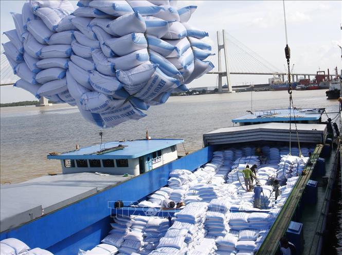 EU công bố hạn ngạch nhập khẩu nông sản và gạo Việt Nam - Ảnh 1.