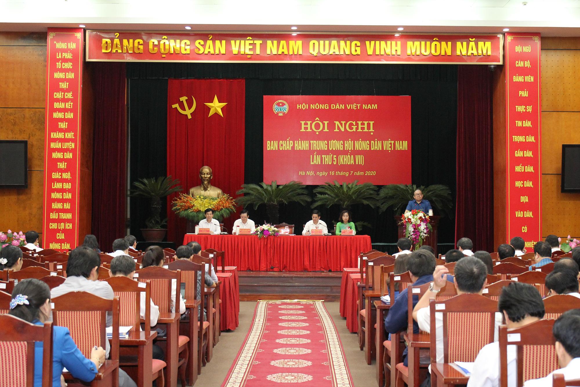 Hội nghị BCH T.Ư Hội NDVN: Tập trung thảo luận 6 vấn đề nóng về nông nghiệp, nông dân, nông thôn - Ảnh 2.