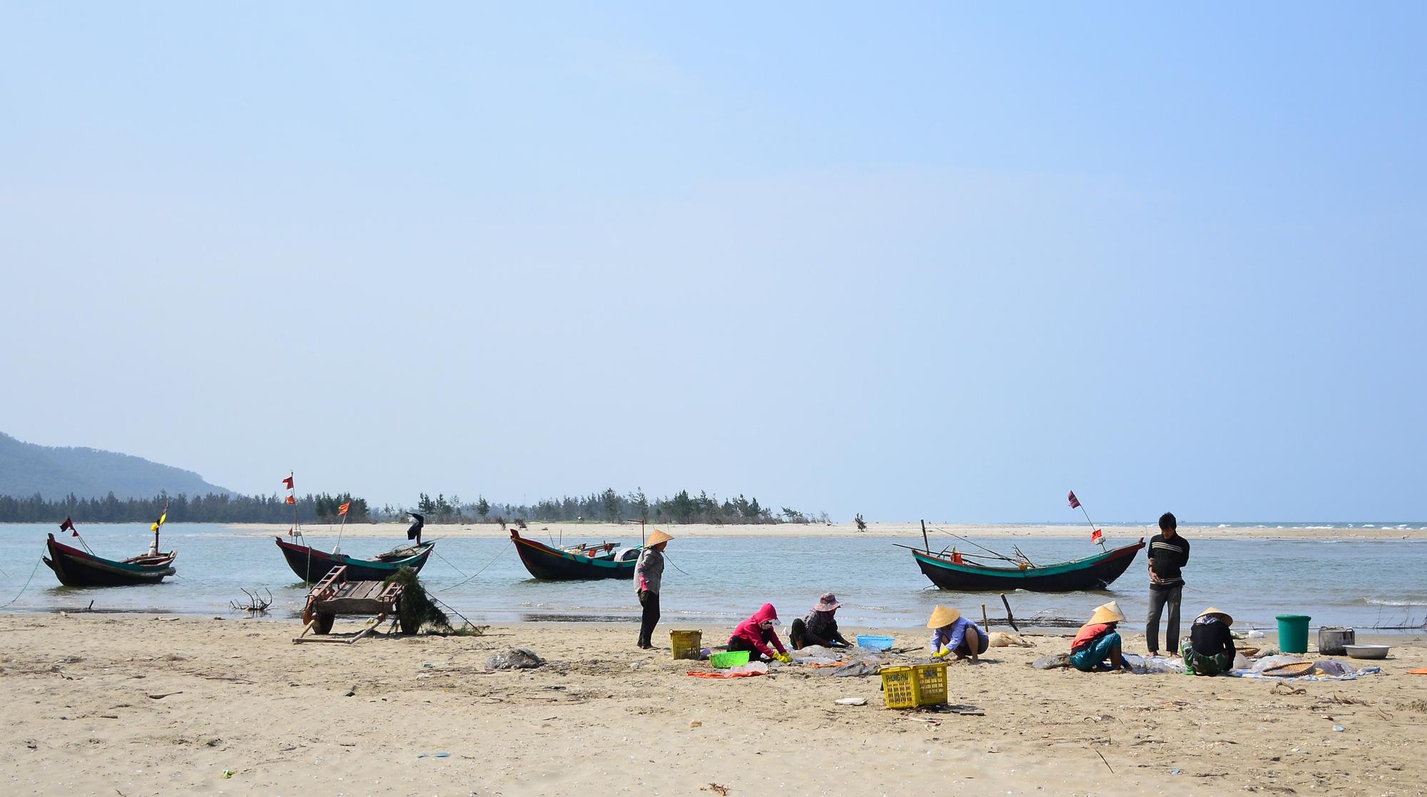 Hà Tĩnh: Nắng nóng, gió lào bỏng rát ngư dân vẫn ra biển thu hoạch sứa kiếm bộn tiền. - Ảnh 7.