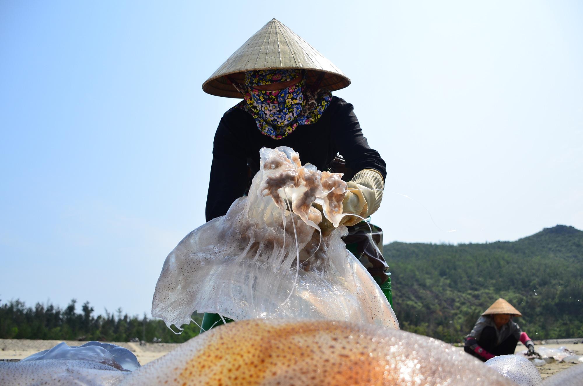 Hà Tĩnh: Nắng nóng, gió lào bỏng rát ngư dân vẫn ra biển thu hoạch sứa kiếm bộn tiền. - Ảnh 1.