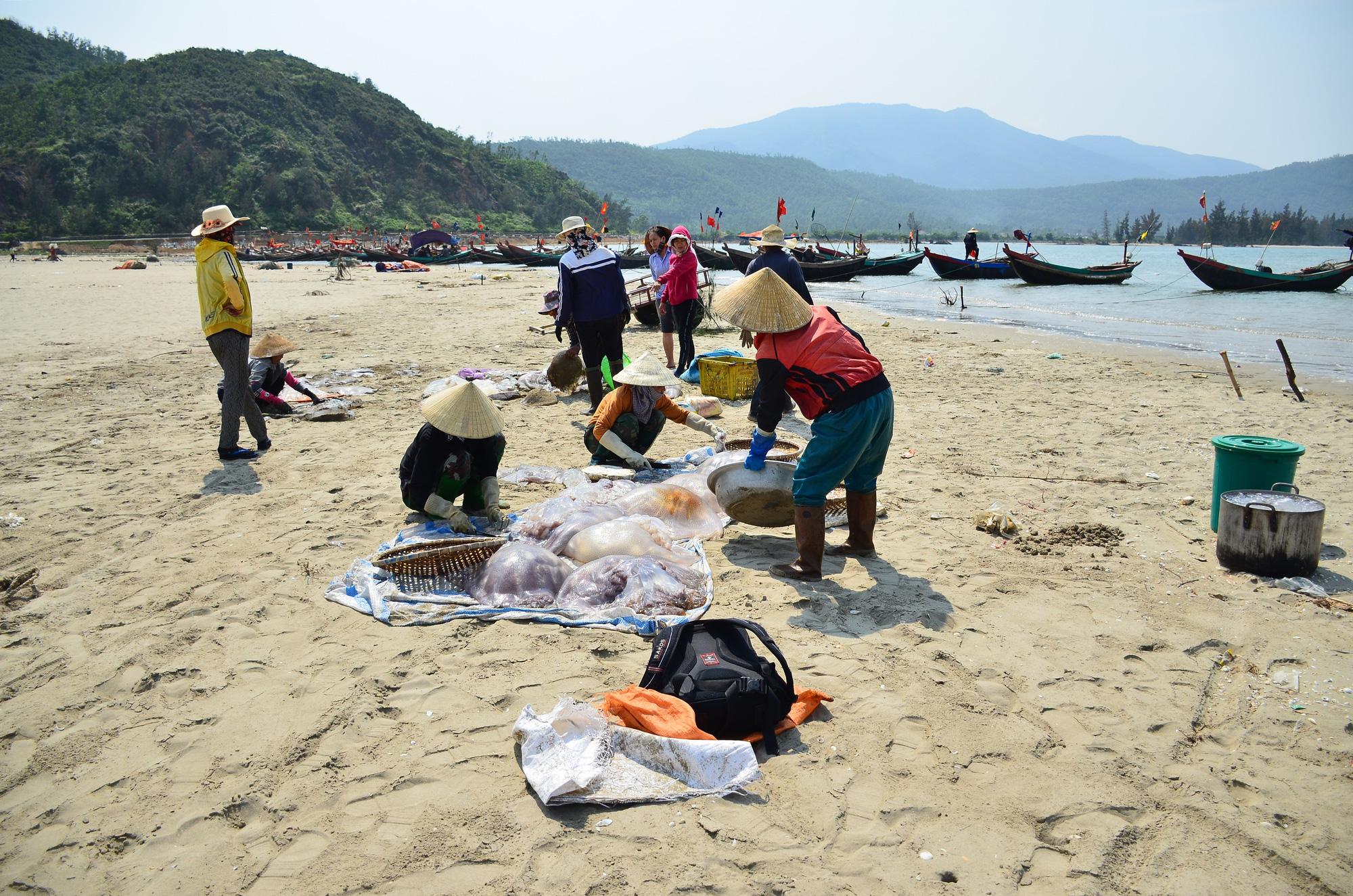 Hà Tĩnh: Nắng nóng, gió lào bỏng rát ngư dân vẫn ra biển thu hoạch sứa kiếm bộn tiền. - Ảnh 5.