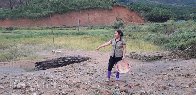 Thái Nguyên: Cần xử lý nghiêm những sai phạm tại mỏ than Yên Phước - Ảnh 2.