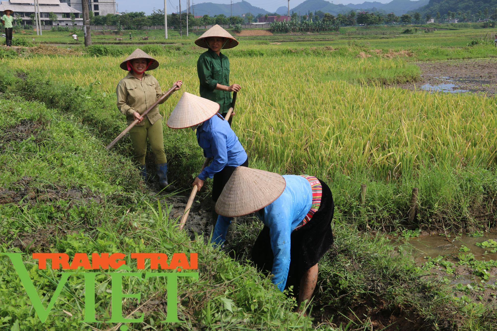 Kim Bôi huy động sức dân xây dựng nông thôn mới - Ảnh 4.