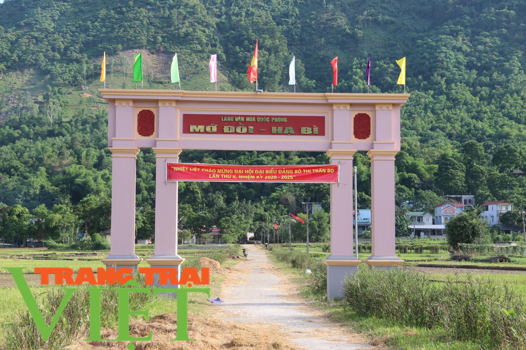Kim Bôi huy động sức dân xây dựng nông thôn mới - Ảnh 5.