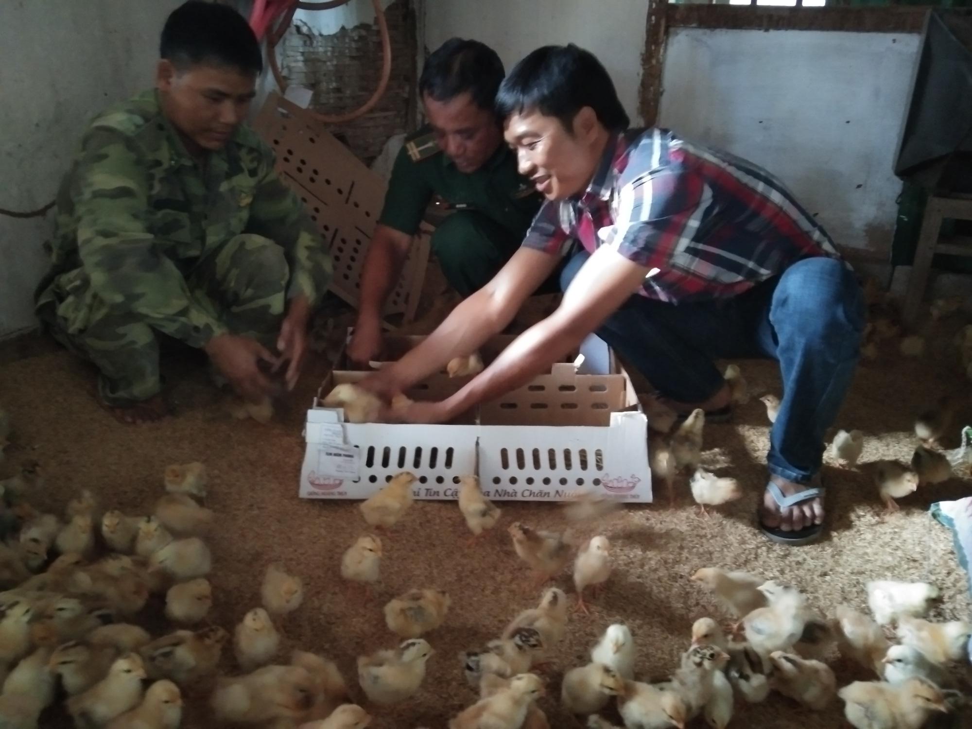 8X Quảng Trị tiết kiệm tiền, mua gà giống tặng người nghèo miền núi - Ảnh 1.