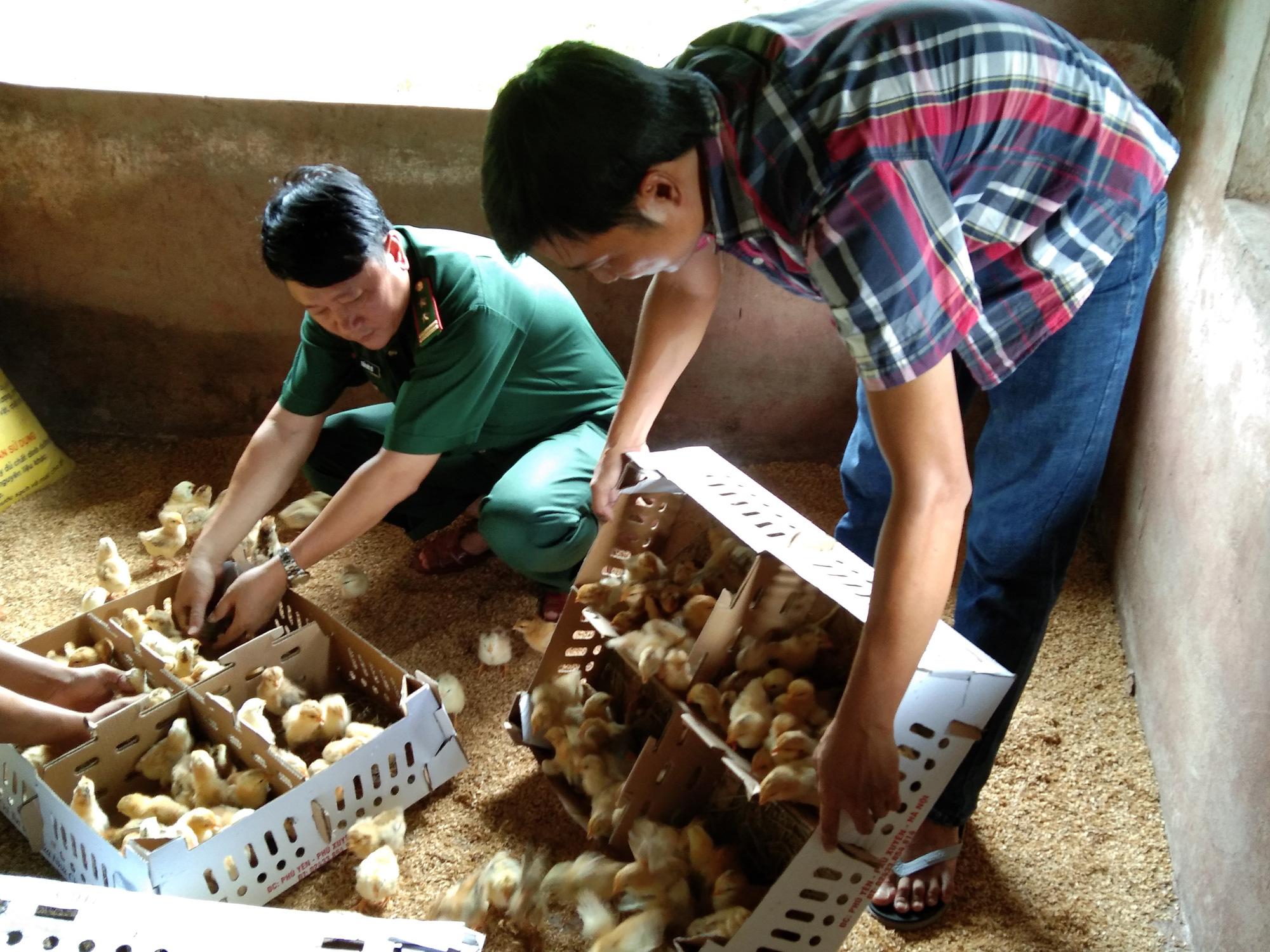 8X Quảng Trị tiết kiệm tiền, mua gà giống tặng người nghèo miền núi - Ảnh 2.