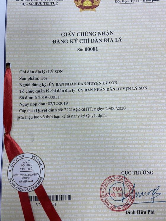 """Tỏi Lý Sơn được cấp giấy chứng nhận """"Chỉ dẫn địa lý"""" - Ảnh 1."""