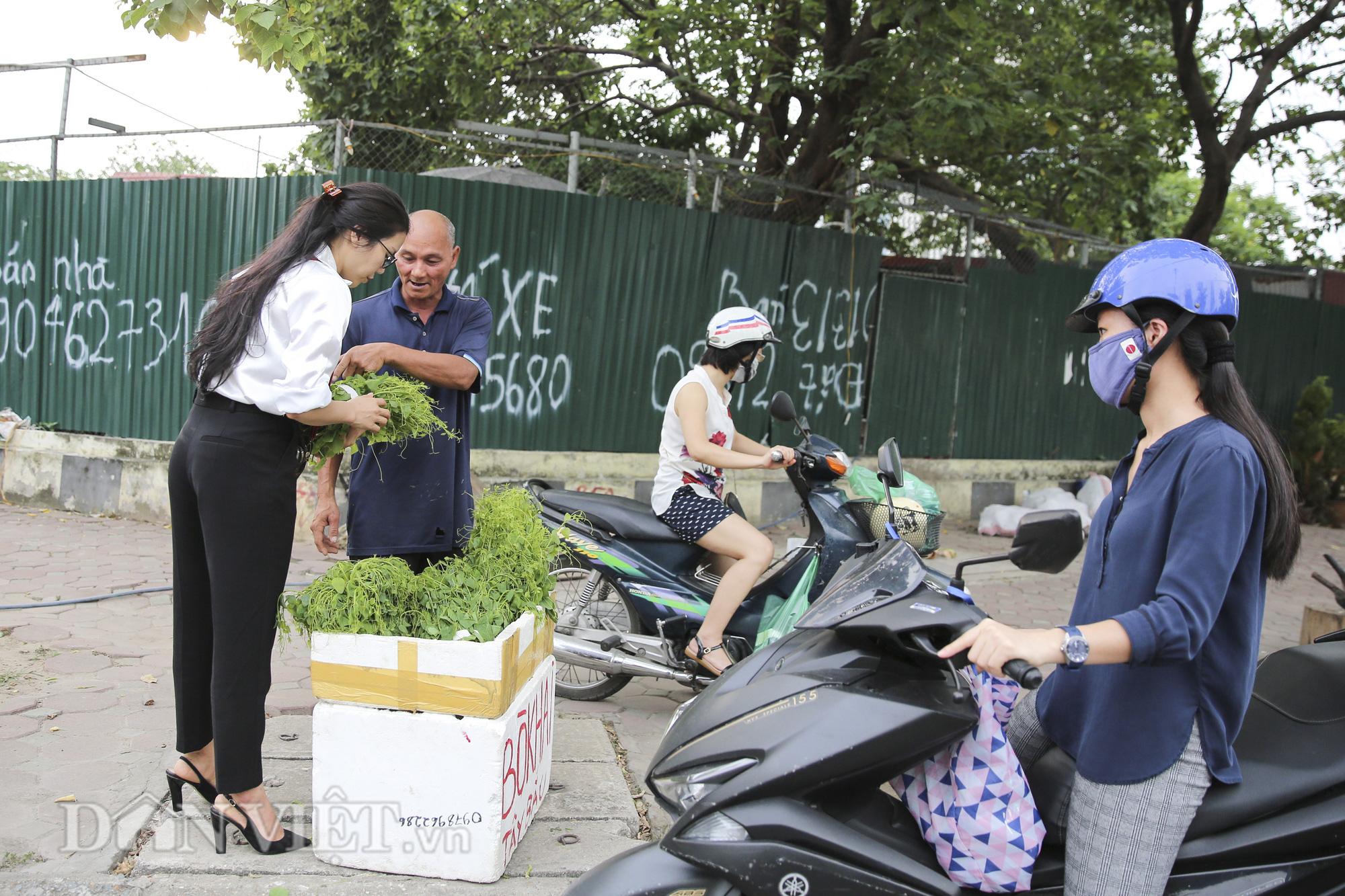 """Đặc sản rau rừng """"bò khai Tây Bắc"""" đổ về Hà Nội, 50.000 đồng/bó vẫn hút khách - Ảnh 2."""