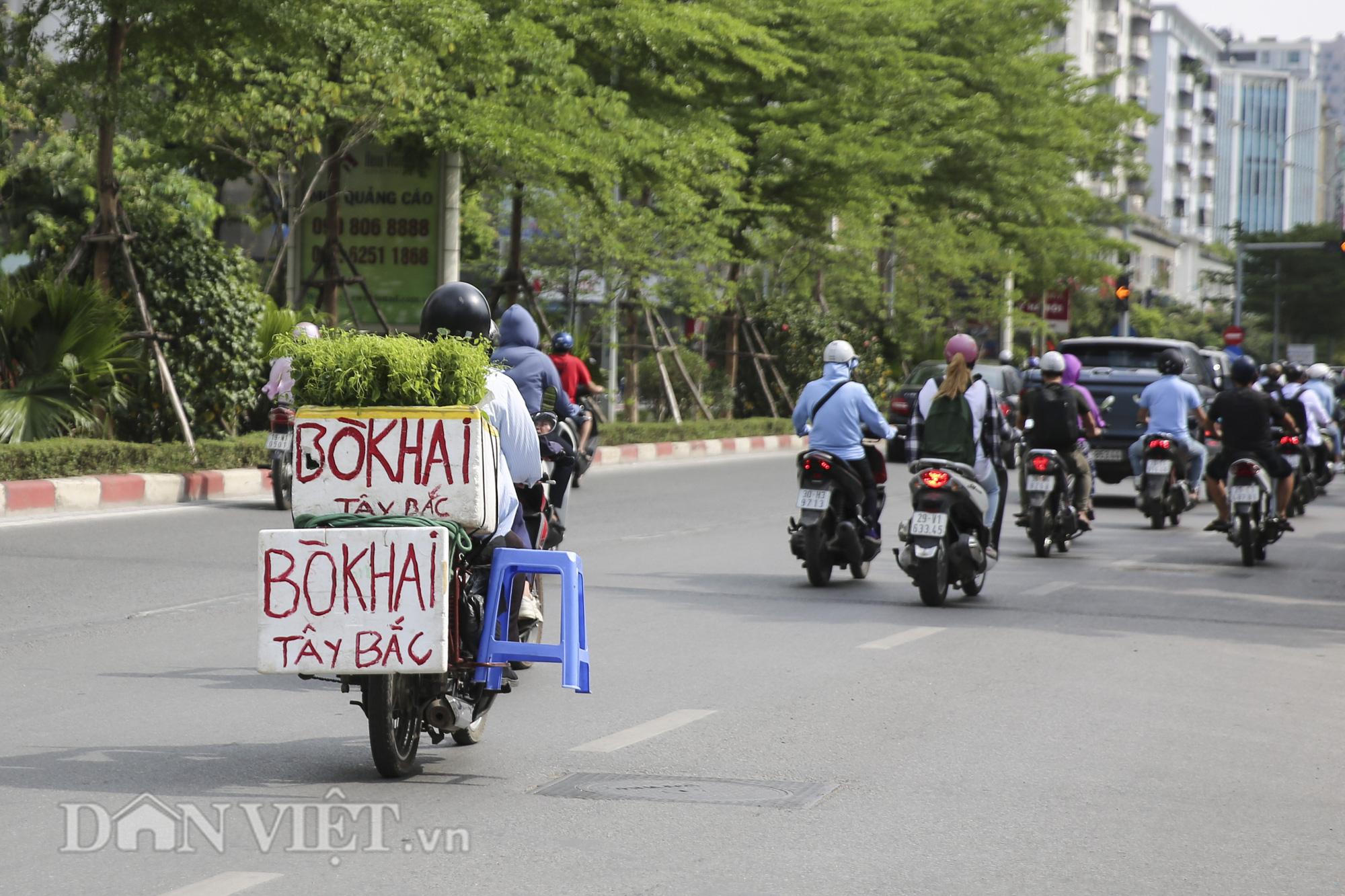 """Đặc sản rau rừng """"bò khai Tây Bắc"""" đổ về Hà Nội, 50.000 đồng/bó vẫn hút khách - Ảnh 4."""