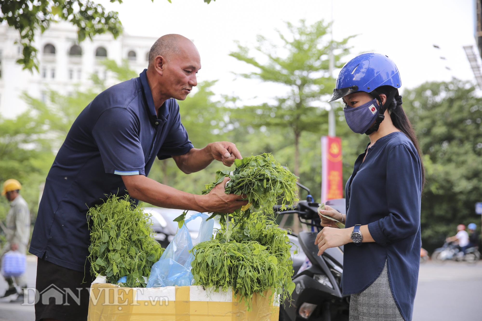 """Đặc sản rau rừng """"bò khai Tây Bắc"""" đổ về Hà Nội, 50.000 đồng/bó vẫn hút khách - Ảnh 6."""