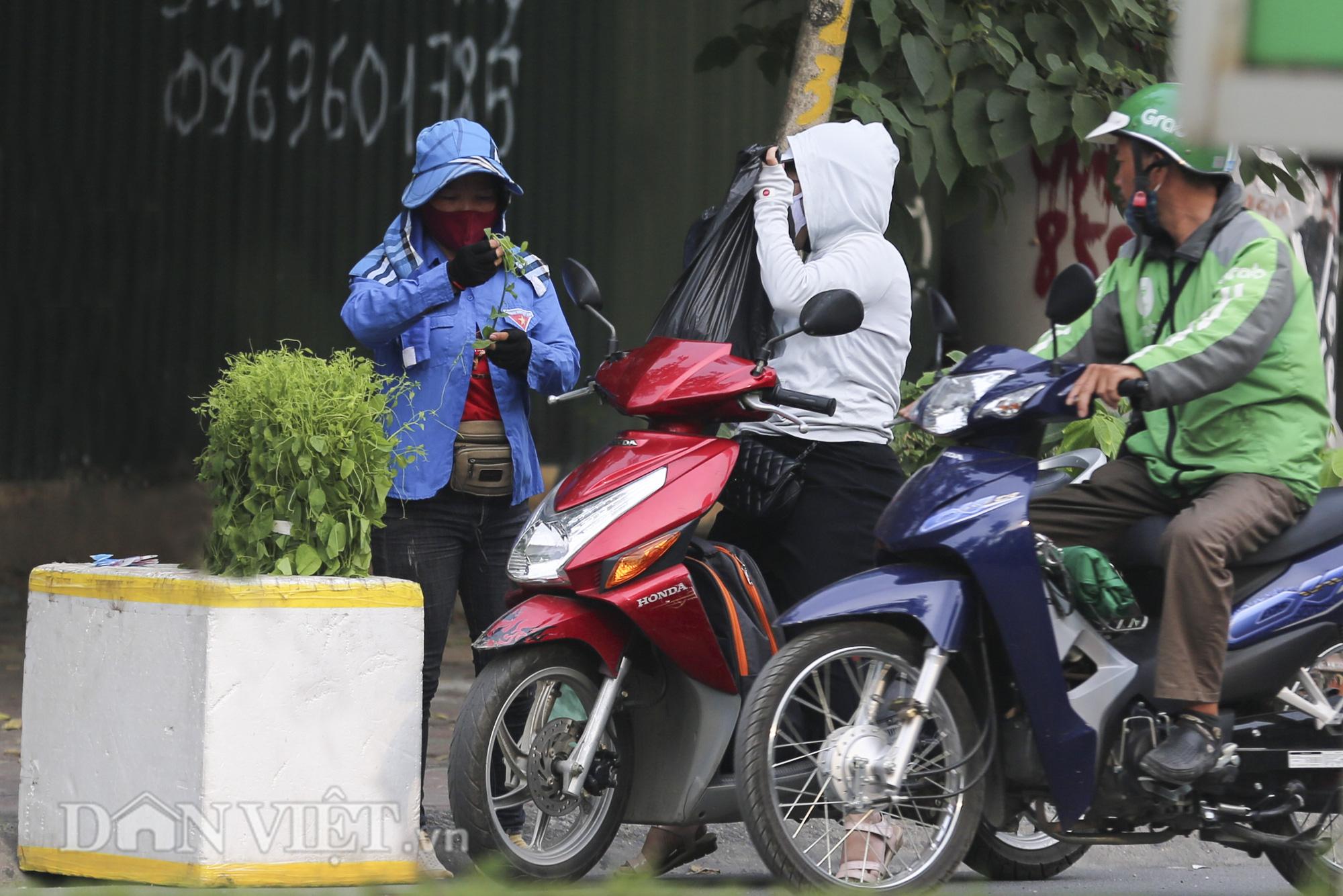 """Đặc sản rau rừng """"bò khai Tây Bắc"""" đổ về Hà Nội, 50.000 đồng/bó vẫn hút khách - Ảnh 8."""