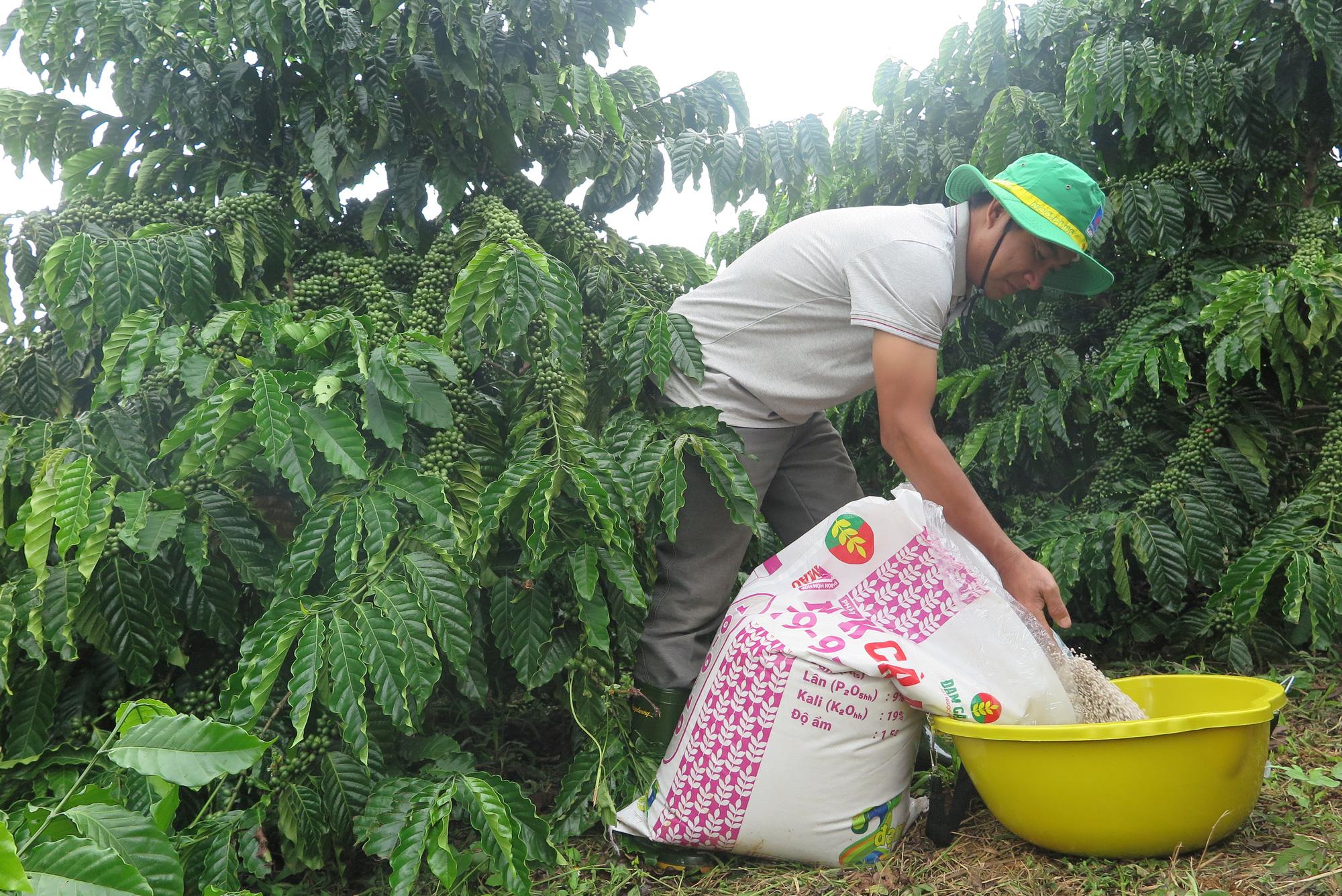 Triết lý kinh doanh gắn với lợi ích nhà nông - Ảnh 2.