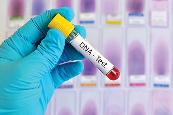 Ám ảnh những nỗi đau từ phòng xét nghiệm ADN - Ảnh 2.