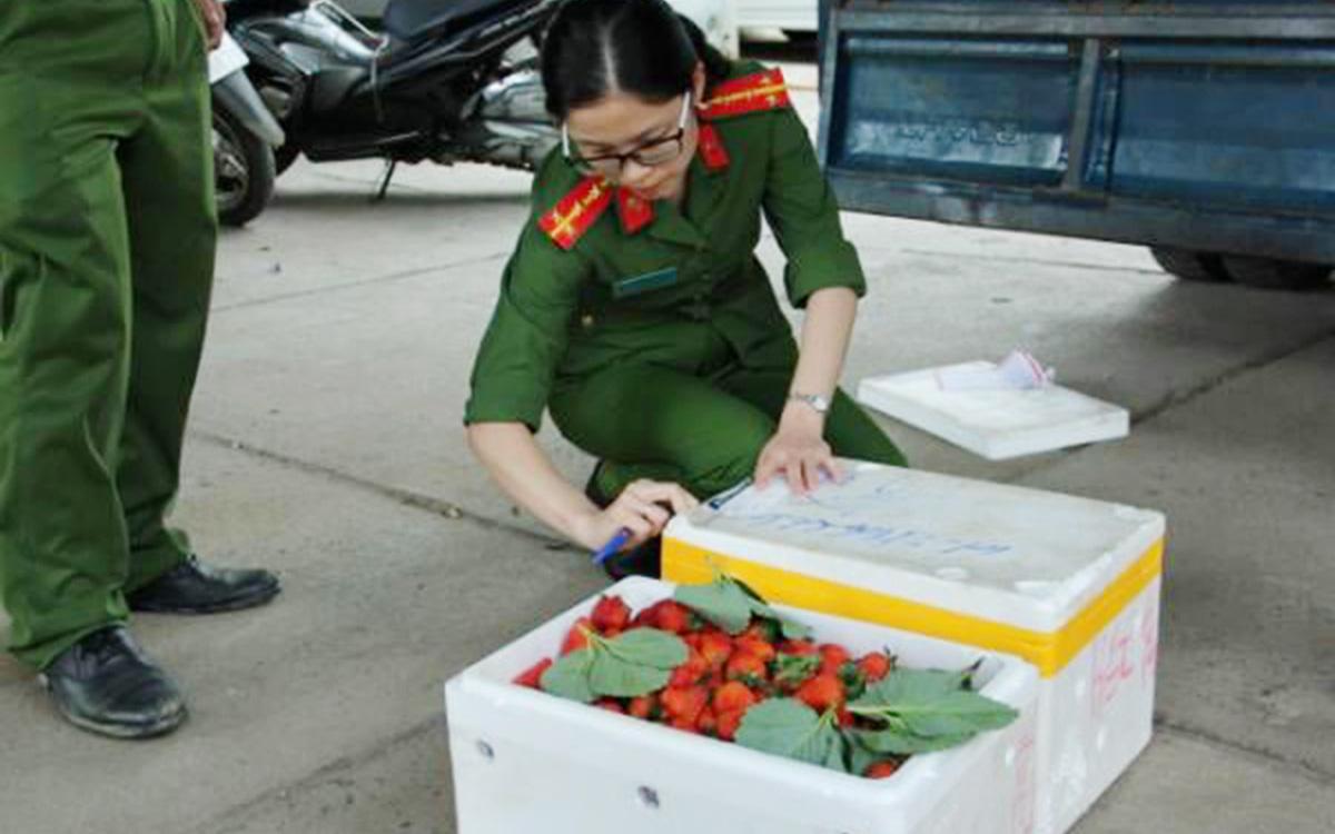 Bắt giữ 3 xe tải chở hàng trăm thùng dâu tây không rõ nguồn gốc chuẩn bị đưa lên Đà Lạt
