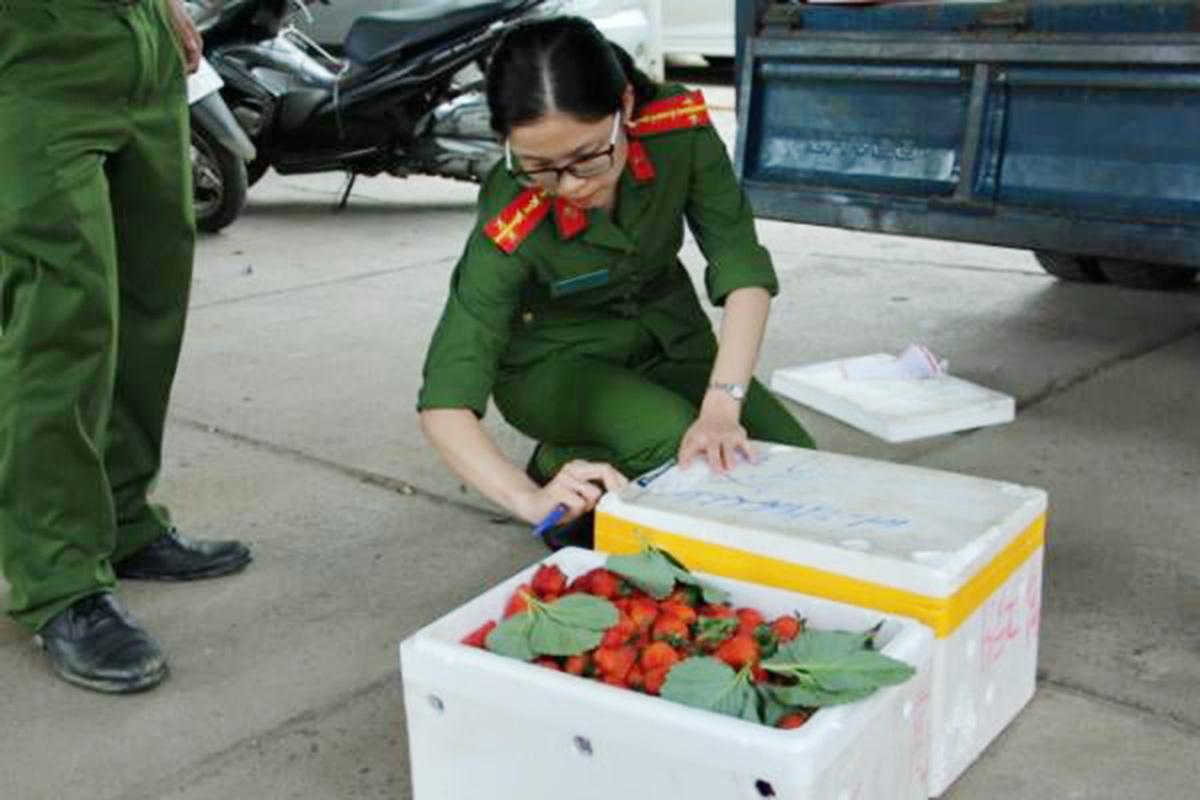 Lâm Đồng: Bắt giữ hàng trăm thùng dâu tây không rõ nguồn gốc chuẩn bị tuồn vào Đà Lạt - Ảnh 2.