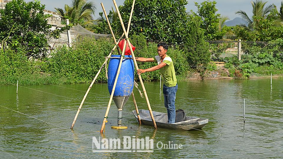 Mỗi năm bắt bán 60 tấn loài cá chạch phàm ăn, trai Nam Định thành tỷ phú - Ảnh 1.