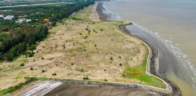 Dự án Khu đô thị lấn biển Cần Giờ (TP.HCM): Nêu lợi ích lớn, nhưng vẫn lo cho môi trường - Ảnh 2.