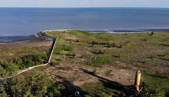 Dự án Khu đô thị lấn biển Cần Giờ (TP.HCM): Nêu lợi ích lớn, nhưng vẫn lo cho môi trường - Ảnh 3.