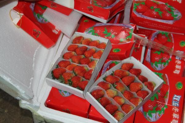 Từ vụ bắt 3,5 tấn dâu tây nghi hàng Trung Quốc: Người dân tiết lộ bí quyết phân biệt - Ảnh 7.