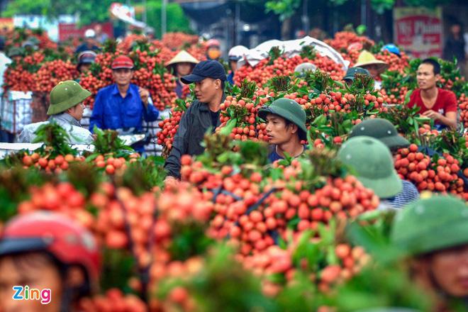Mỹ tăng nhập khẩu xoài, ổi, măng cụt của Việt Nam - Ảnh 2.