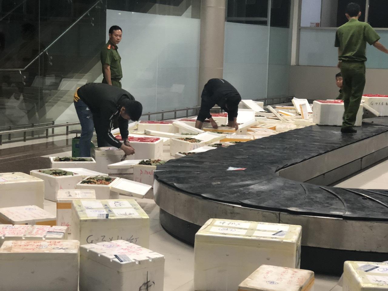 Từ vụ bắt 3,5 tấn dâu tây nghi hàng Trung Quốc: Người dân tiết lộ bí quyết phân biệt - Ảnh 8.