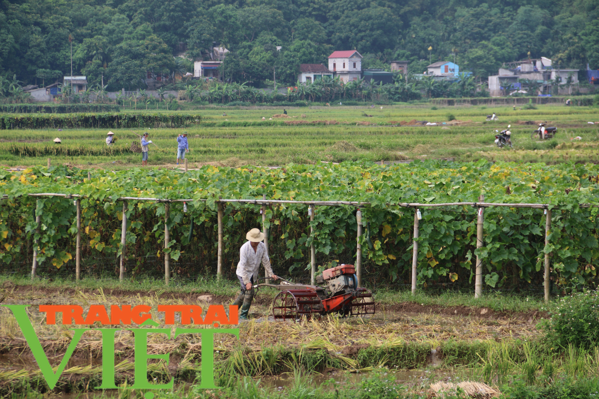 Kim Bôi: Xây dựng nông thôn mới là không có điểm dừng - Ảnh 6.