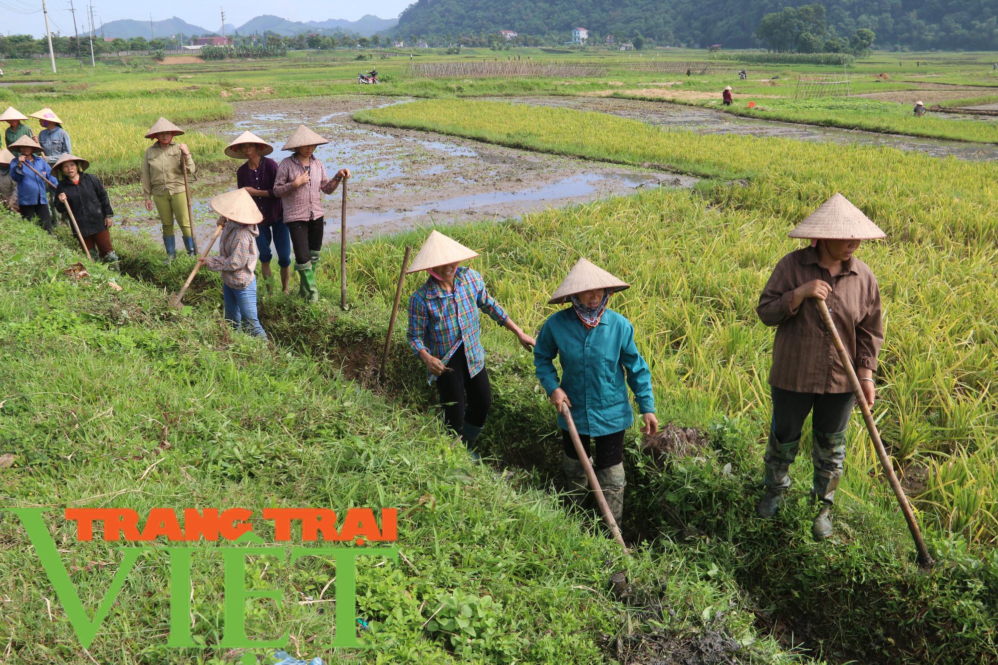 Kim Bôi: Xây dựng nông thôn mới là không có điểm dừng - Ảnh 1.