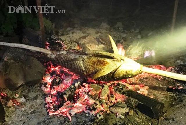 Trắng đêm cùng thợ câu săn cá khủng giữa rừng - Ảnh 5.