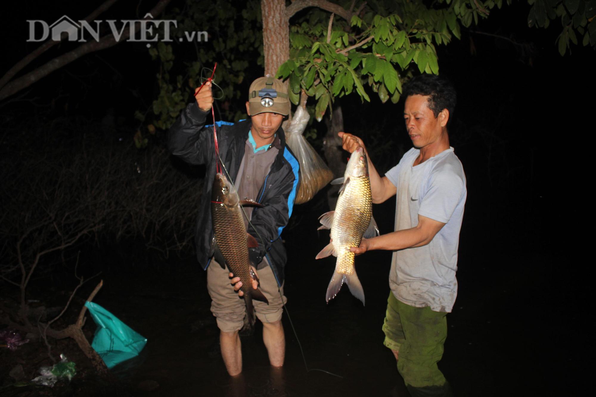 Trắng đêm cùng thợ câu săn cá khủng giữa rừng - Ảnh 3.