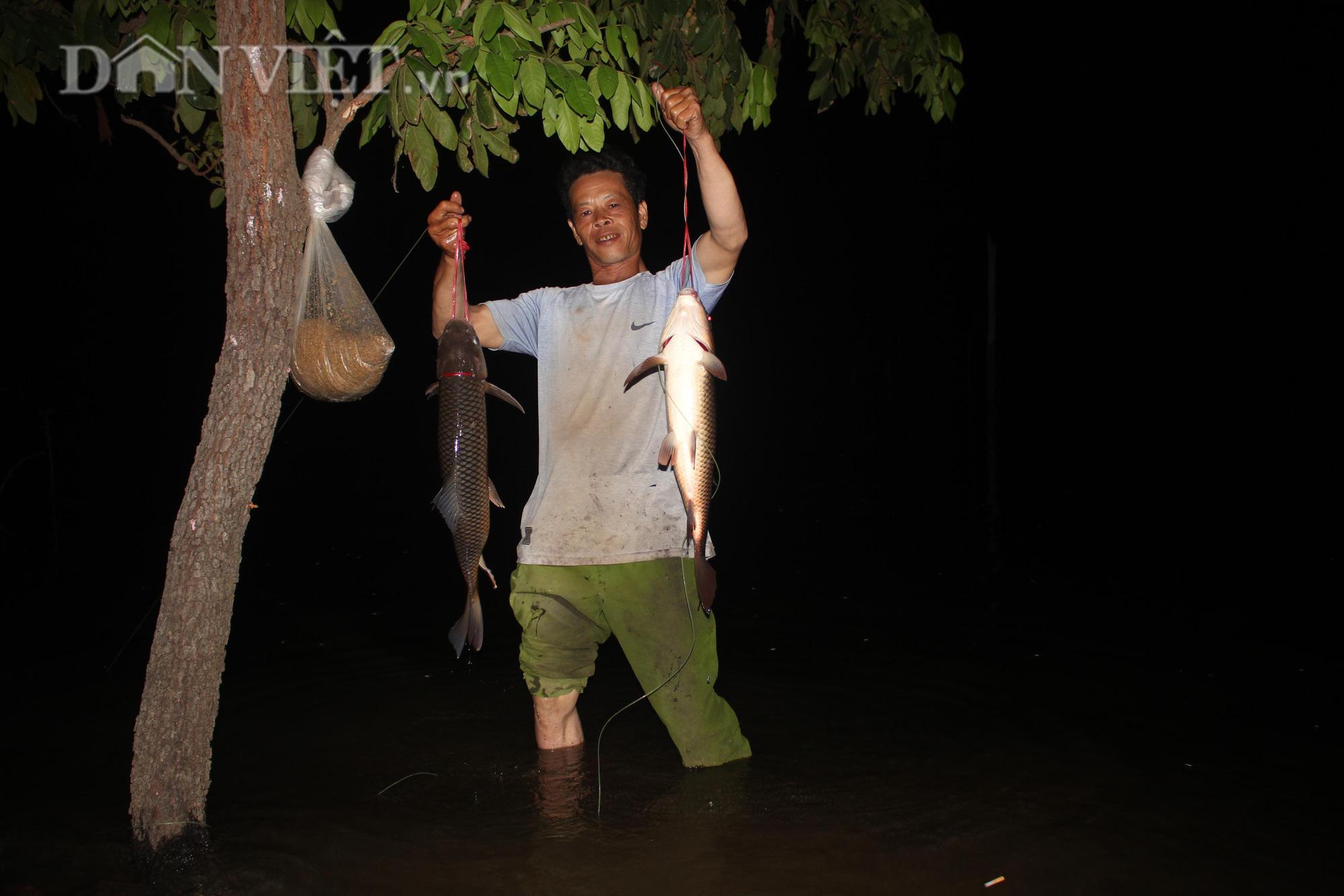 Trắng đêm cùng thợ câu săn cá khủng giữa rừng - Ảnh 1.