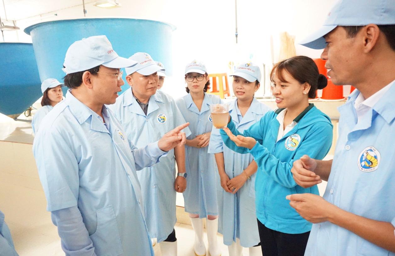 Dự án nuôi tôm công nghệ cao ở Quảng Ninh: Sản xuất 1 tỷ con giống trong năm 2020 - Ảnh 2.