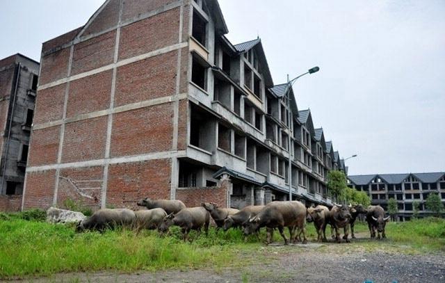 Vietracimex dùng đất khu đô thị bỏ hoang để thu hút nghìn tỷ trái phiếu - Ảnh 2.