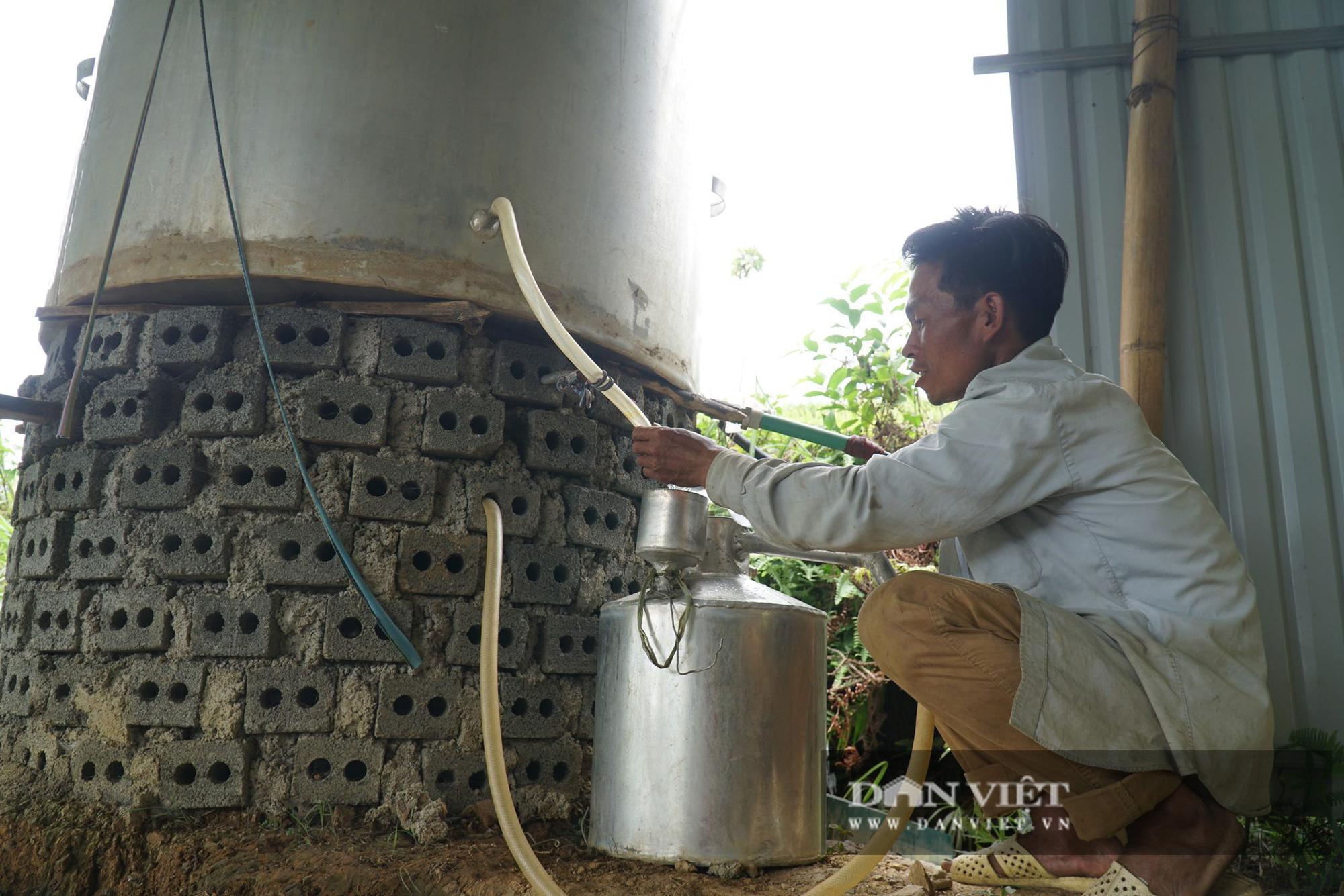 Dân ở đây trồng cây mọc từng khóm để lấy tinh dầu, trồng đến đâu có người lo đến đó - Ảnh 4.