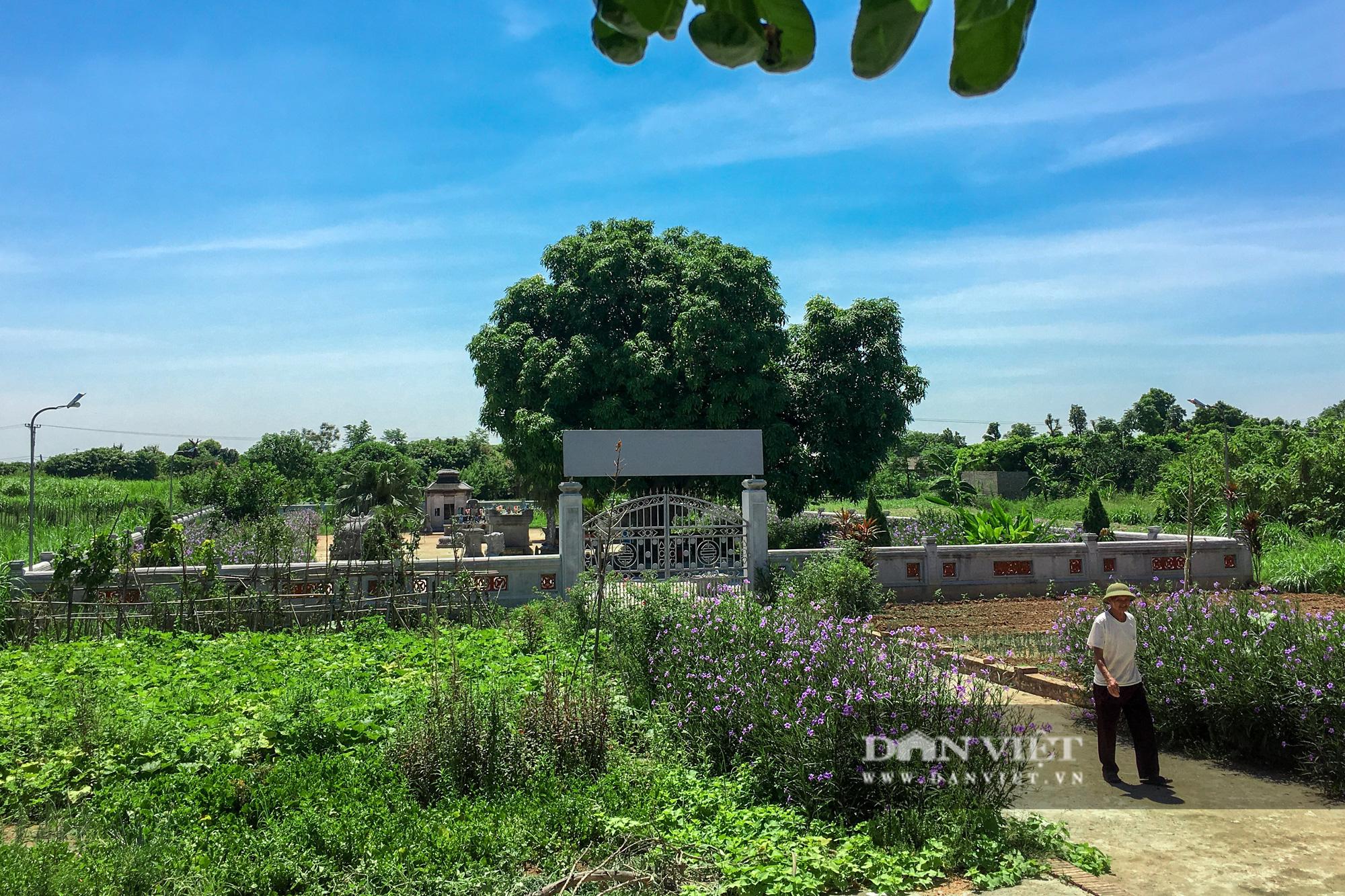 Bí ẩn lăng mộ đá ở Hà Nội bị 2 trận lũ lớn vùi lấp suốt hàng trăm năm - Ảnh 12.