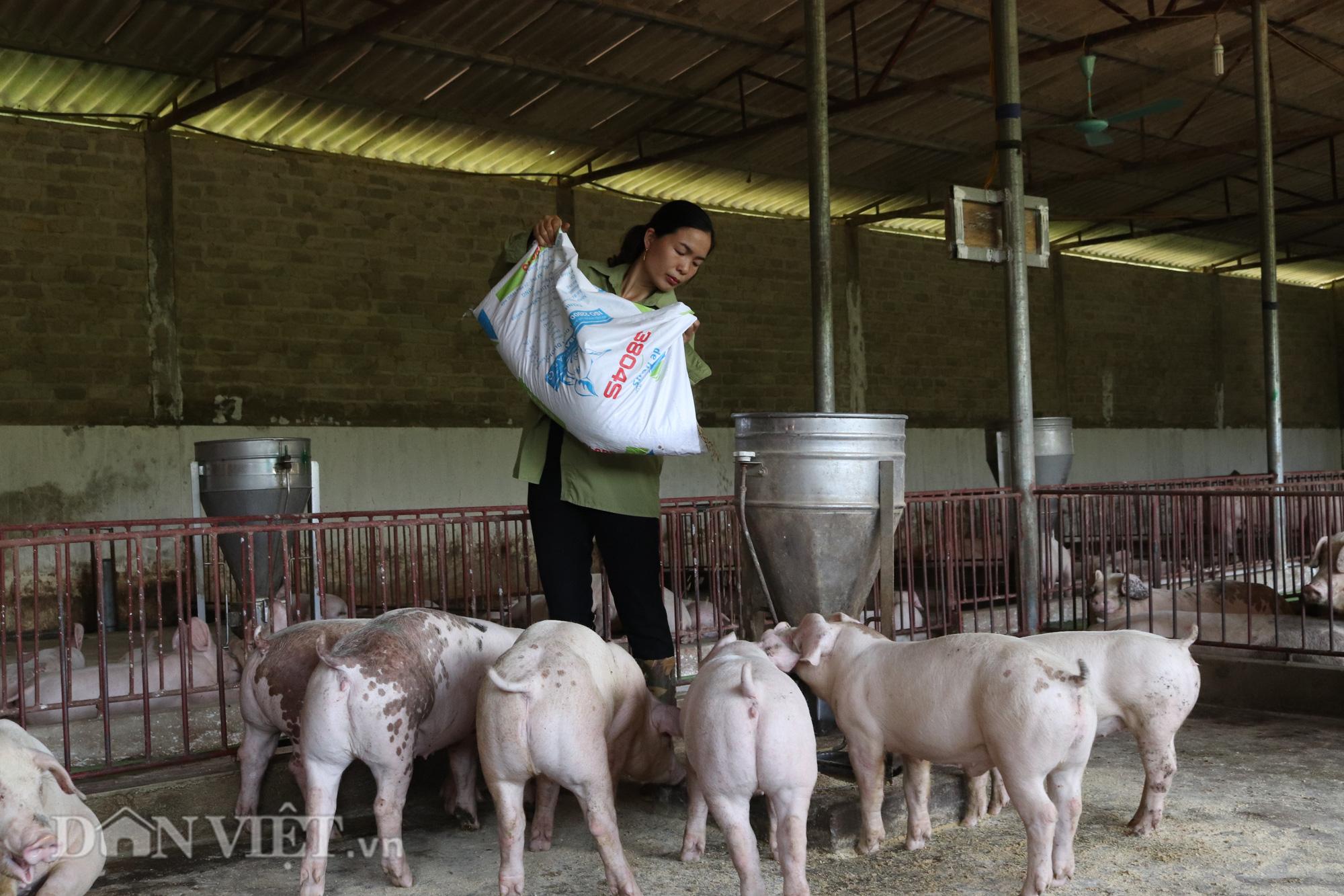 """Bí quyết """"bỏ túi' tiền tỷ từ nuôi lợn thịt của người phụ nữ Thái Sơn La - Ảnh 5."""