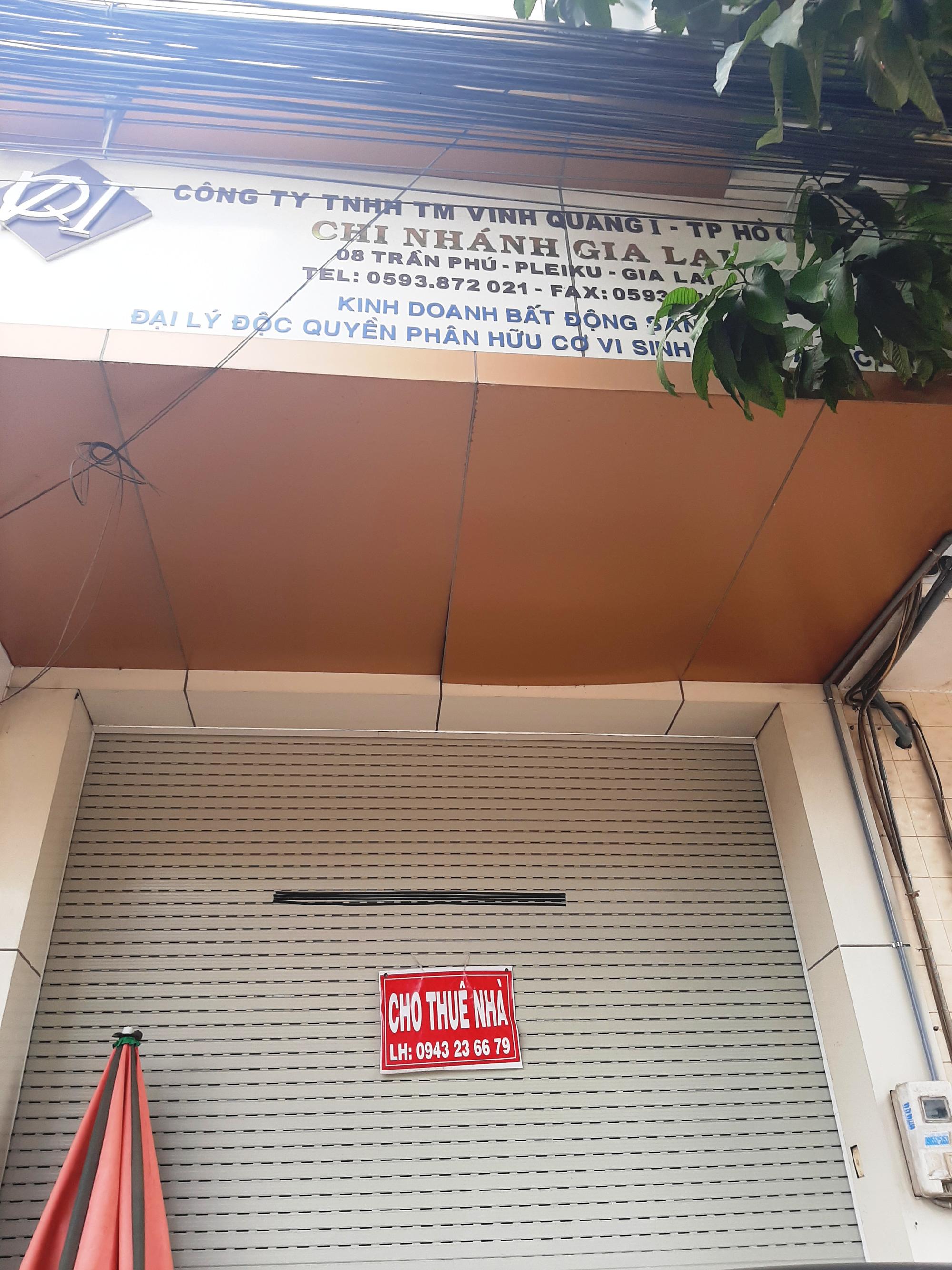 Công ty bất động sản bị kiến nghị khởi tố: UBND tỉnh chỉ đạo kiểm tra, làm rõ - Ảnh 2.