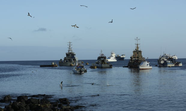 Đội tàu cá khổng lồ của Trung Quốc khiến Ecuador phải gióng chuông báo động - Ảnh 1.