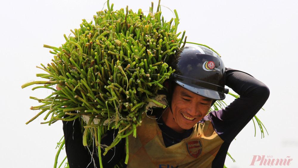 Nhọc nhằn nghề hái rau muống dại ở Sài Gòn - Ảnh 6.
