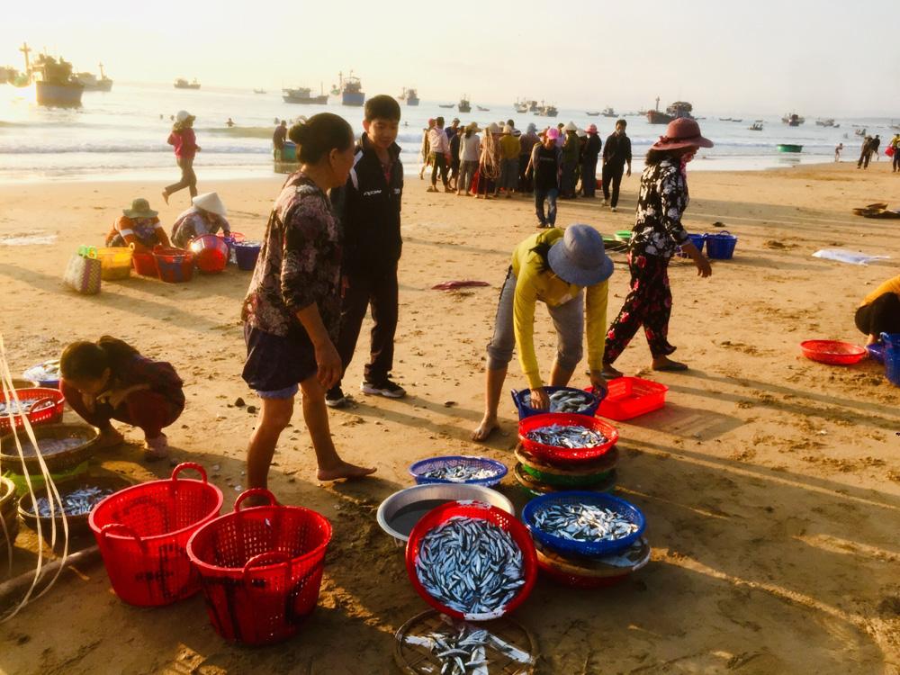 """Phú Yên: Độc đáo, phiên chợ """"đầu mối"""" bán cá tôm tươi rói ngay mép biển, họp nhanh tan cũng nhanh - Ảnh 1."""