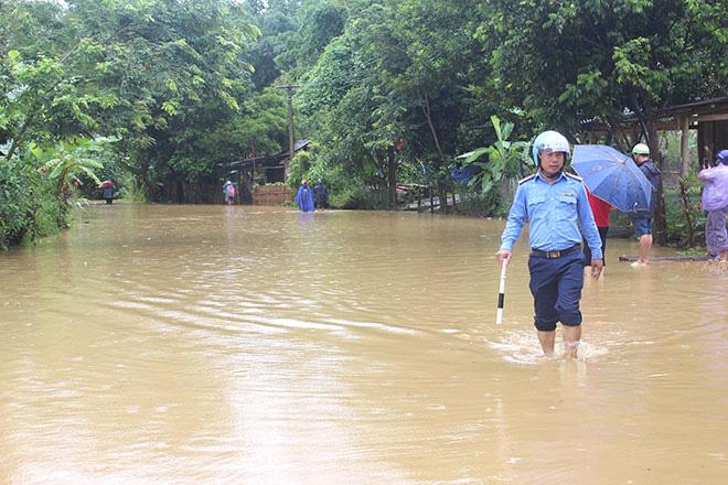230ha lúa của tỉnh Tuyên Quang bị ngập úng vì mưa lớn - Ảnh 1.