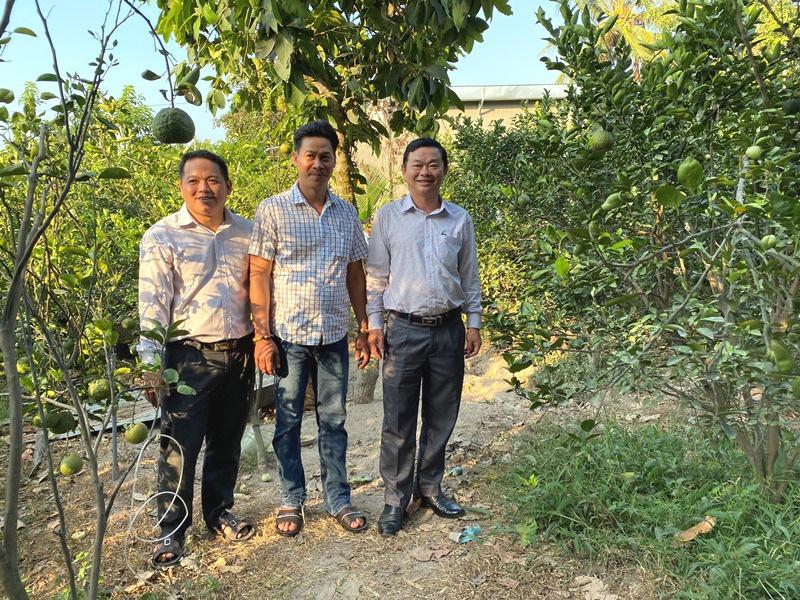 An Giang: Hội viên nhanh khấm khá nhờ trồng cây ăn quả VietGAP - Ảnh 2.