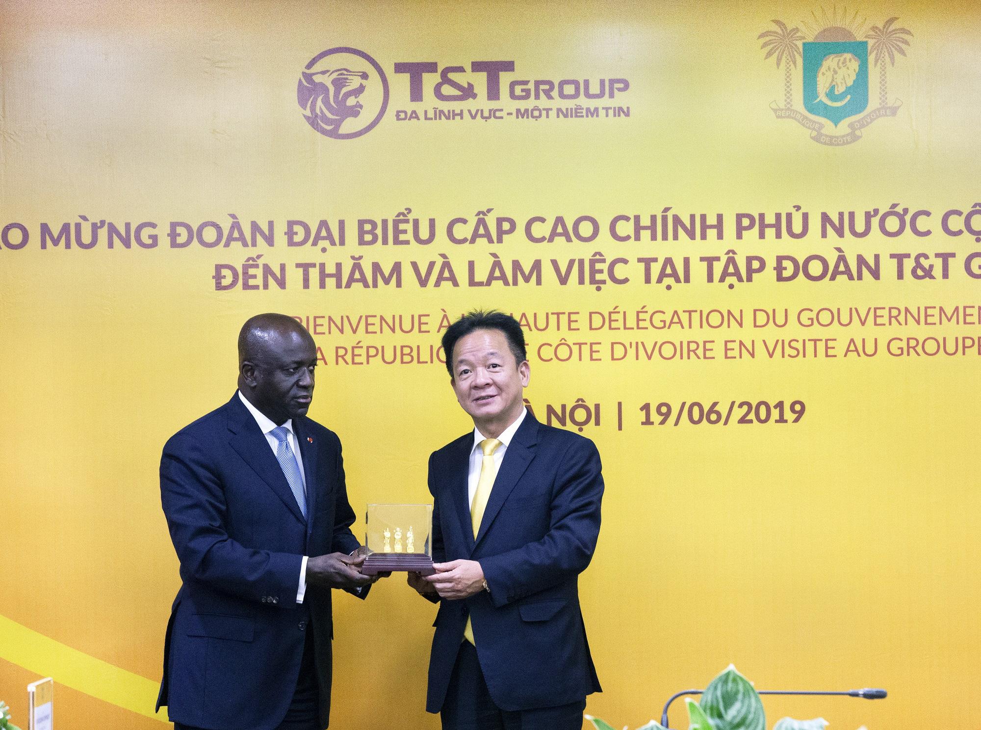 T&T Group thu mua toàn bộ sản lượng điều thô của Chính phủ Bờ Biển Ngà - Ảnh 2.