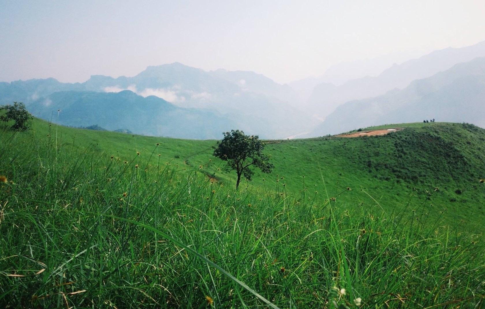 """Cao Bằng: Ở nơi này núi cỏ xanh rì, nằm xuống tha hồ ngắm """"thiên đường mây trắng"""" - Ảnh 4."""