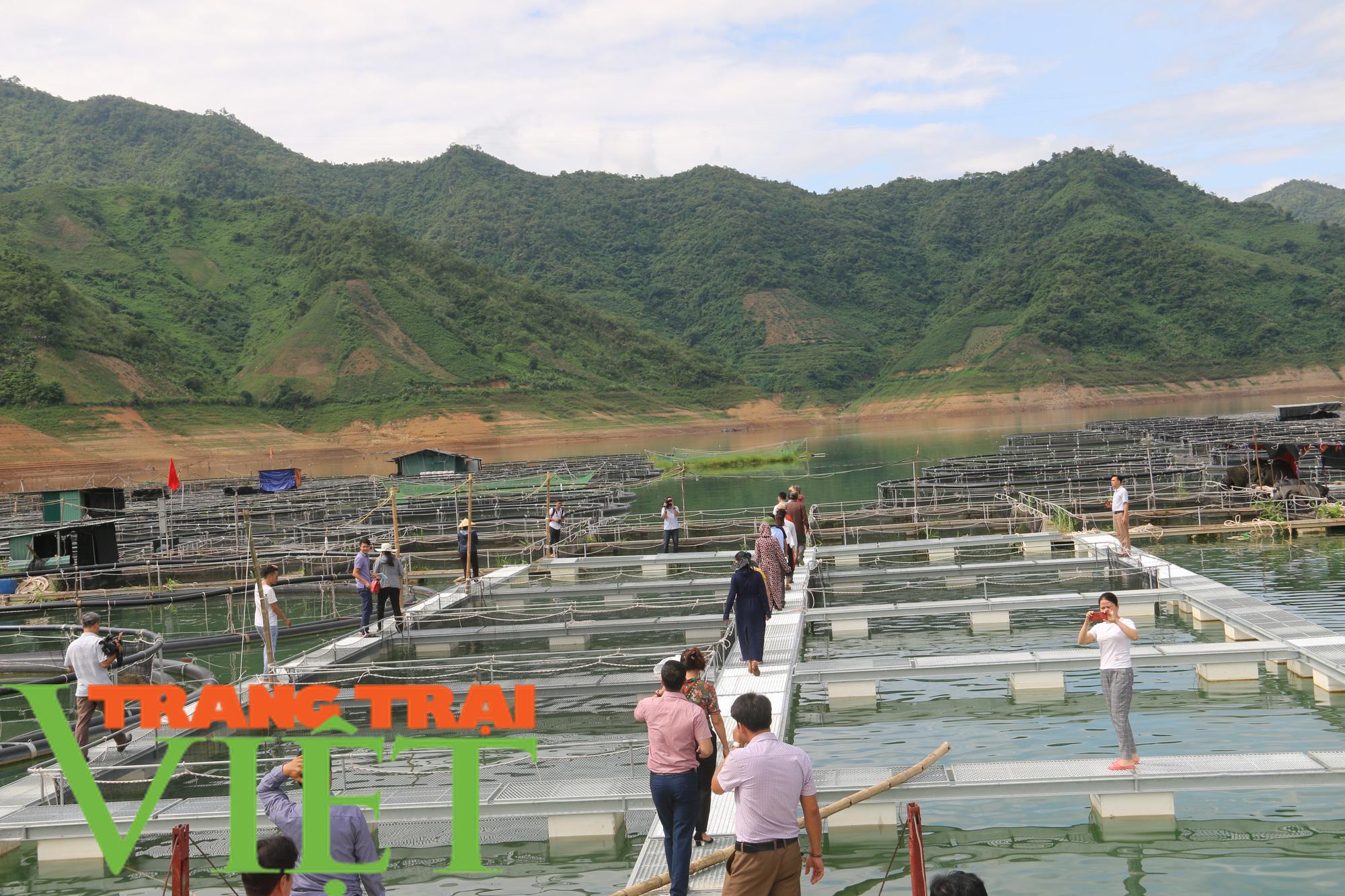 Sơn La: Khai thác tiềm năng du lịch lòng hồ thuỷ điện - Ảnh 4.
