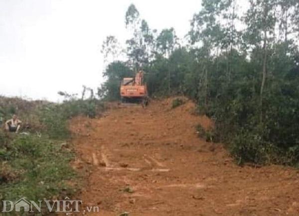 """Vĩnh Phúc: Giao hơn 55ha đất cho chủ tịch xã, rừng phòng hộ bị """"hạ sát"""" - Ảnh 3."""